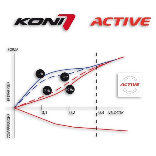 Grafico Active